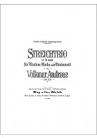 Trio d-moll op. 29
