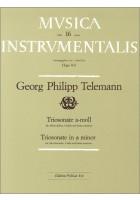 Triosonate a-moll TWV 42:a1