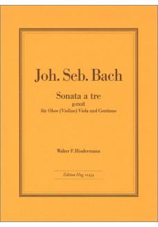 Triosonate g-moll BWV 528